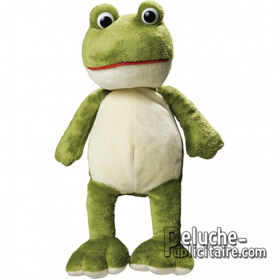 Purchase Frog Plush 21 cm. Plush to customize.