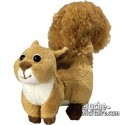 Buy Squirrel Plush 18 cm.Plush to customize.