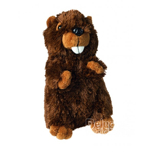 Buy Beaver Plush 18 cm. Plush to customize.