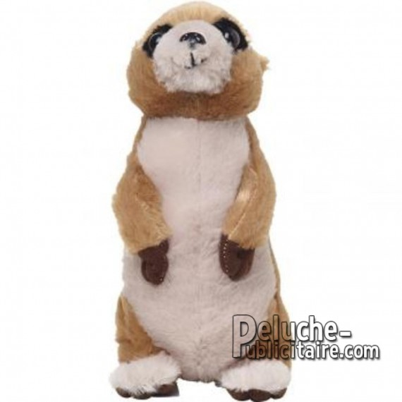 Purchase Meerkat Plush 21 cm. Plush to customize.