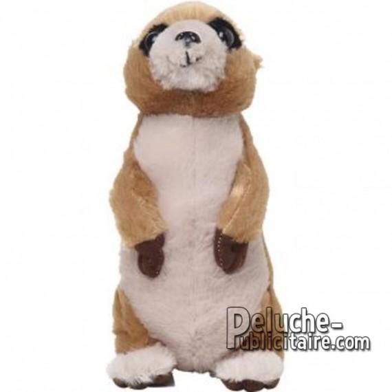 Purchase Meerkat Plush 21 cm.Plush to customize.