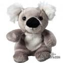 Buy Koala Soft Toy Uni.Plush to customize.