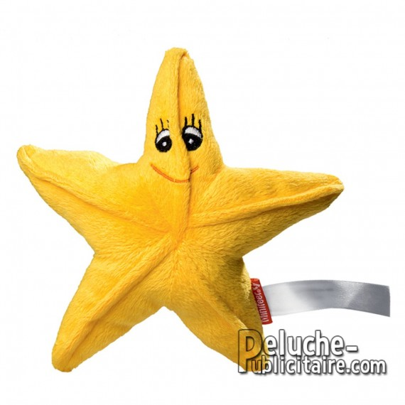 Purchase Starfish Plush 17 cm. Plush to customize.