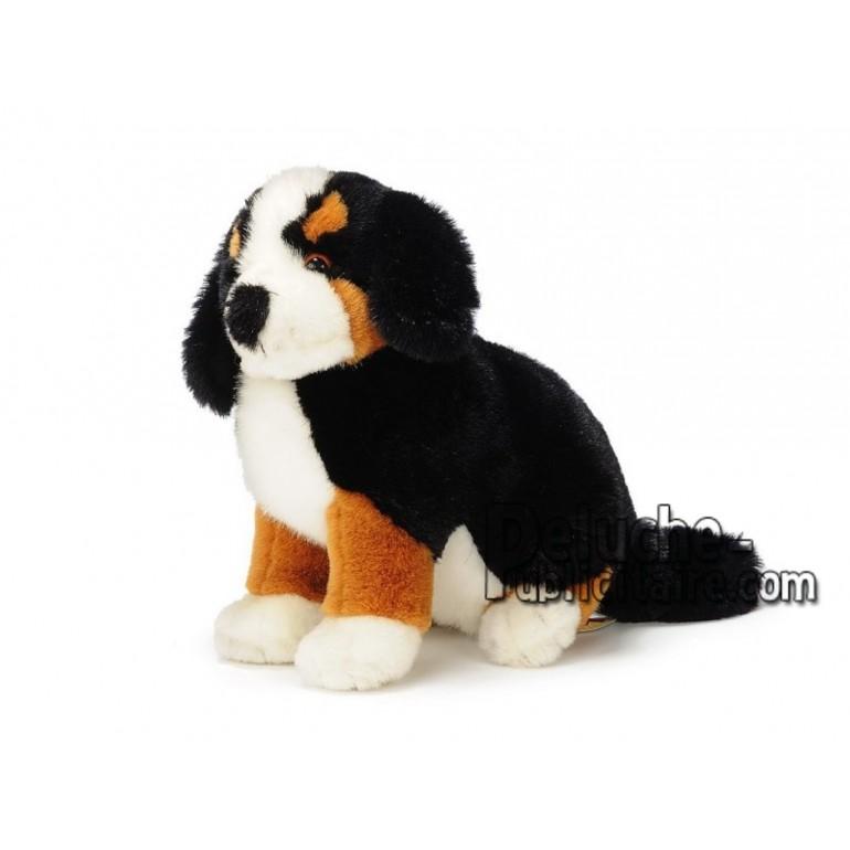 Achat peluche chien montagne bernois multicolore 20cm. Peluche personnalisée.