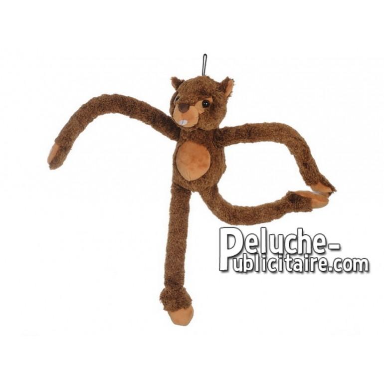 Achat peluche marmotte marron 50cm. Peluche personnalisée.