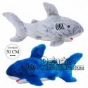 Achat peluche requin gris 50cm. Peluche personnalisée.