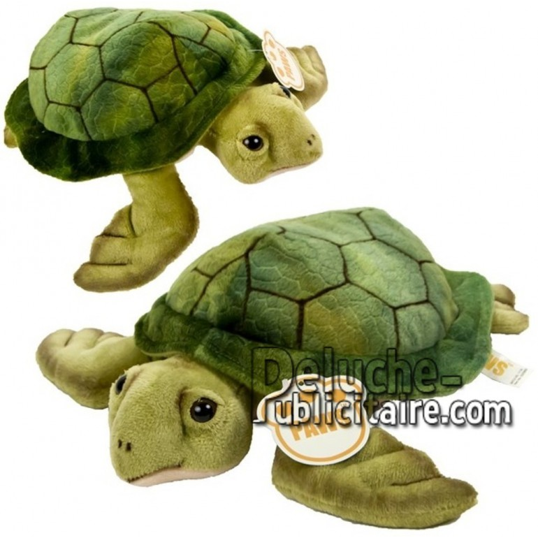 Achat peluche tortue vert 25cm. Peluche personnalisée.