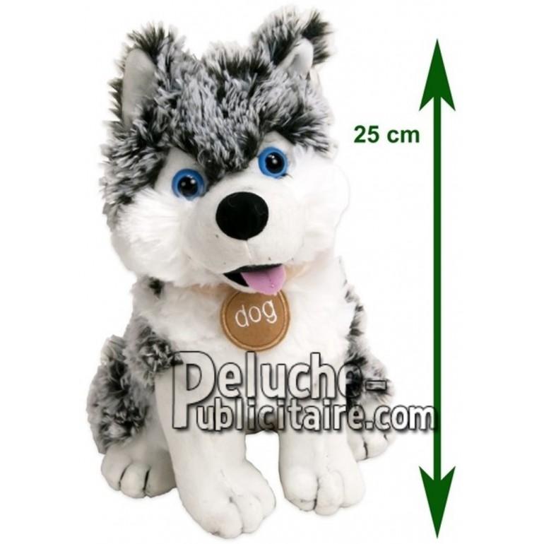Achat peluche husky gris 35cm. Peluche personnalisée.