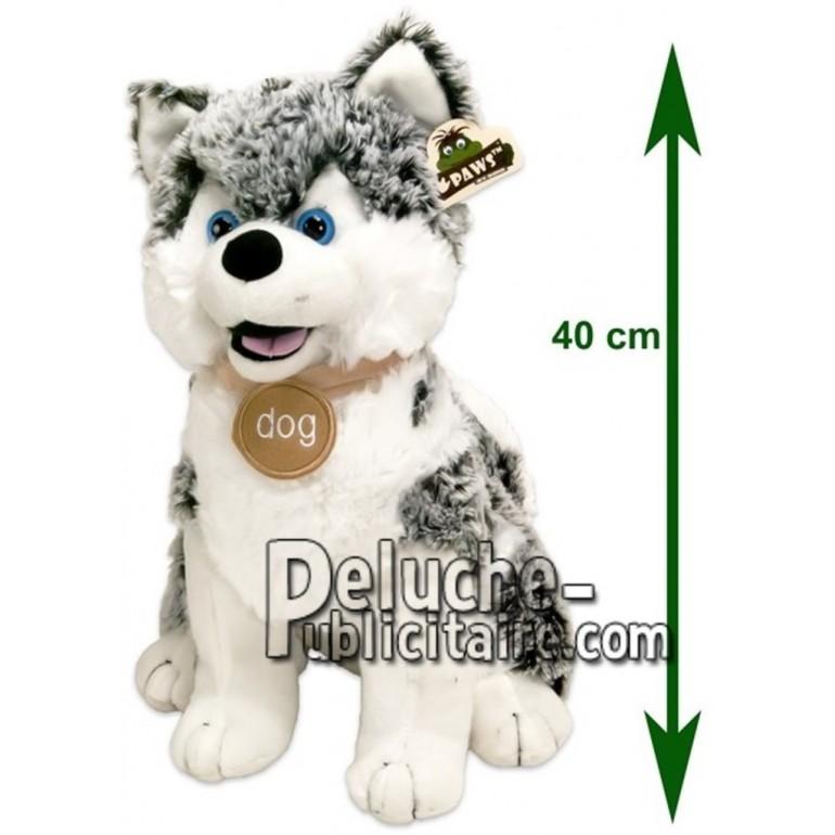 Achat peluche husky gris 40cm. Peluche personnalisée.