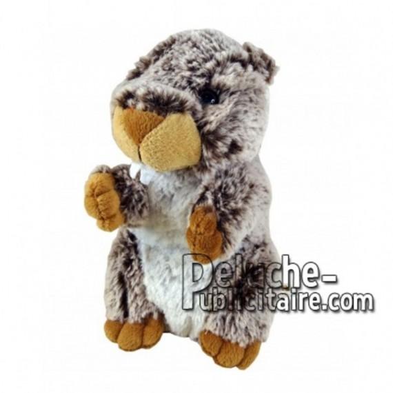 Achat peluche marmotte marron 18cm. Peluche personnalisée.