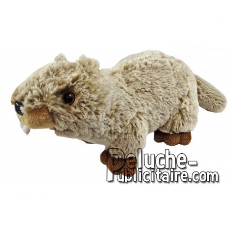 Achat peluche marmotte marron 20cm. Peluche personnalisée.