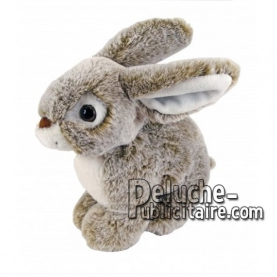 Buy Brown rabbit plush 20cm. Personalized Plush Toy.