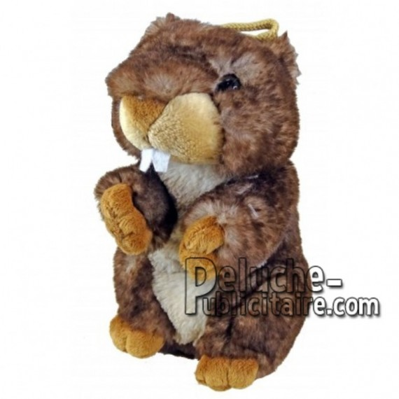 Buy Brown marmot plush 18cm. Personalized Plush Toy.