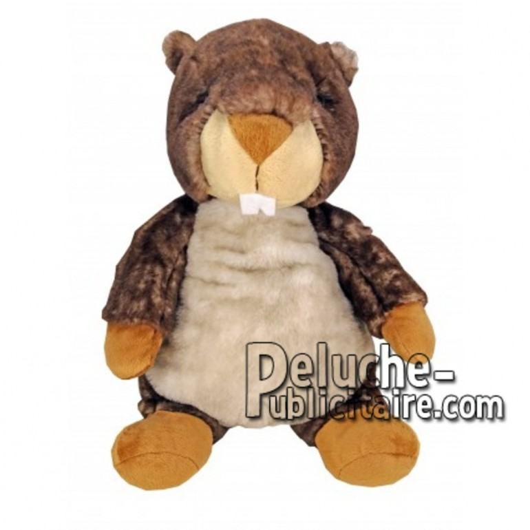 Buy Brown marmot plush 30cm. Personalized Plush Toy.