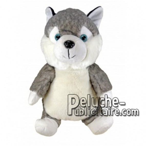 Buy Grey husky dog plush 30cm. Personalized Plush Toy.