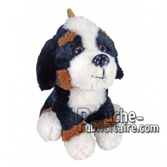 Achat peluche chien blanc 20cm. Peluche personnalisée.