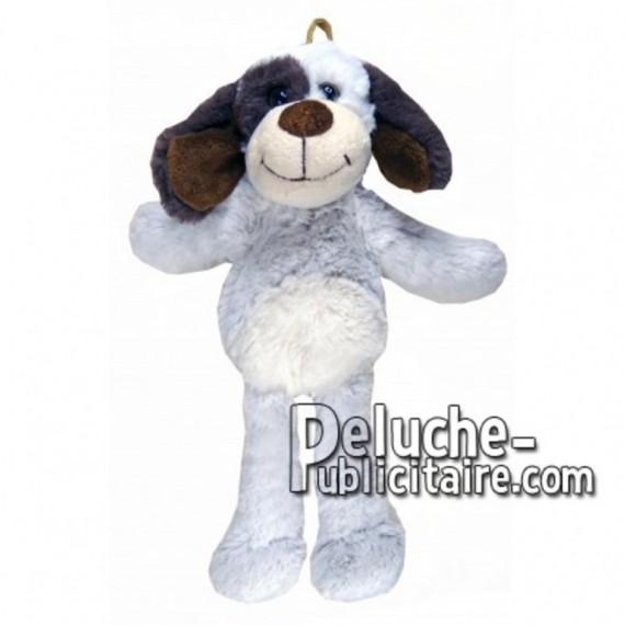 Achat peluche chien blanc 35cm. Peluche personnalisée.
