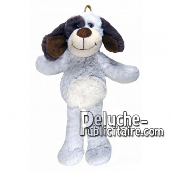 Buy White dog plush 35cm. Personalized Plush Toy.