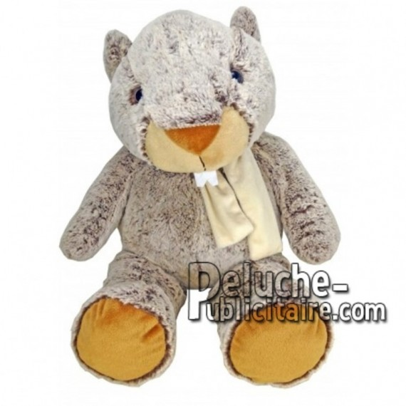 Buy Brown marmot plush 55cm. Personalized Plush Toy.
