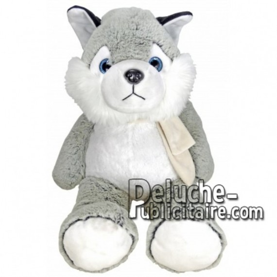Buy Grey husky dog plush 55cm. Personalized Plush Toy.