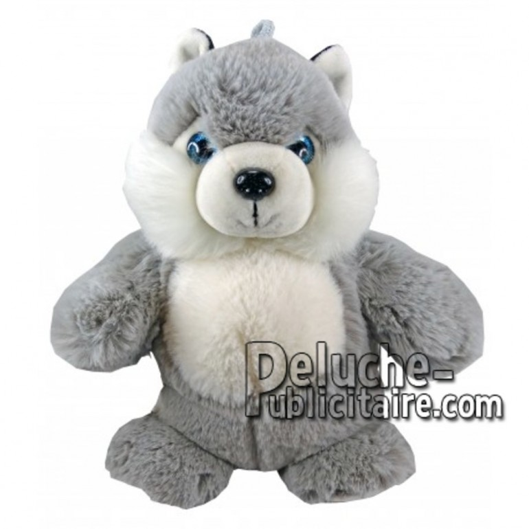 Buy Grey husky dog plush 25cm. Personalized Plush Toy.