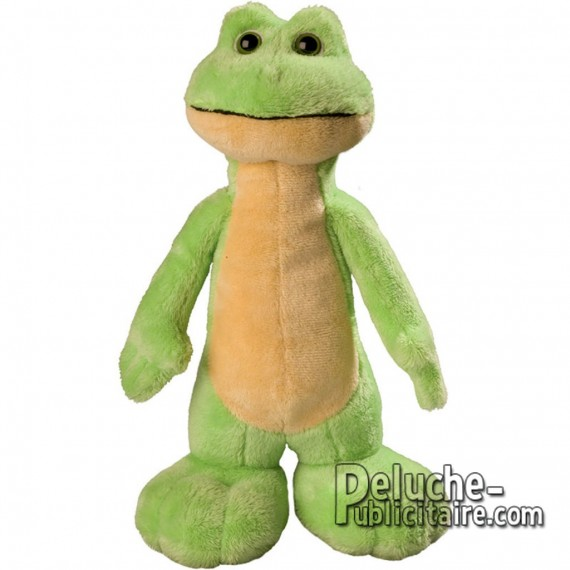Purchase Frog Plush 25 cm. Plush to customize.