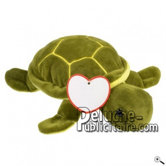 Buy green tortoise peluche 22cm. Personalized Plush Toy.